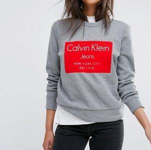 Calvin Klein sweatshirt grey red flocked logo
